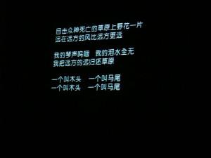 周云蓬在未名诗歌节开幕上唱《九月》